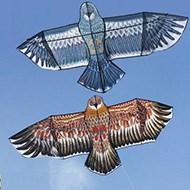 潍坊卡通老鹰风筝+100米线板