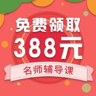 388元名师辅导课程