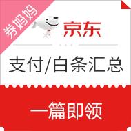 【支付/白条】京东支付白条券汇总 8月15日更新,1-8元支付券