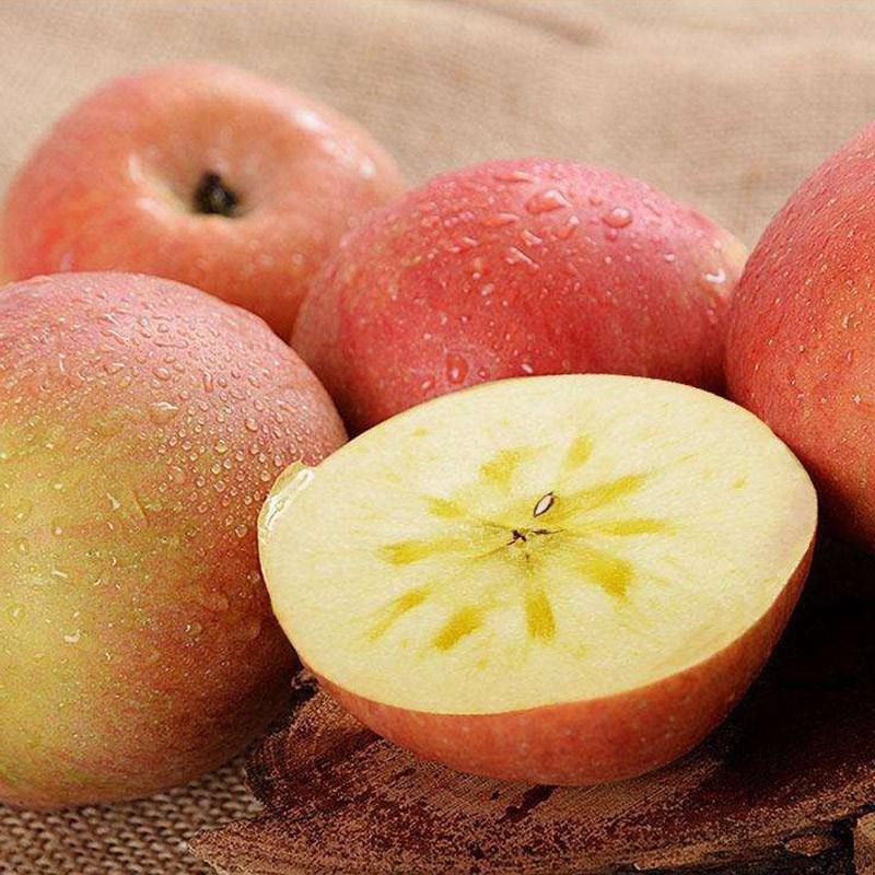 新疆阿克苏冰糖心苹果5斤