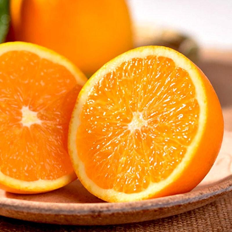 四川新鲜金堂脐橙现摘现发5斤