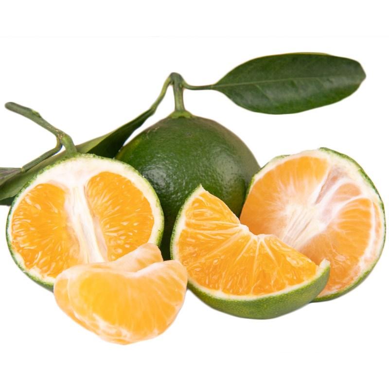 新鲜无籽青皮蜜桔4斤